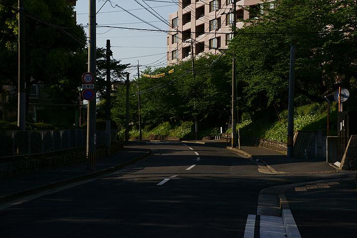DSC05694.jpg